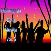 Disfrutando la Musica, Vol. 5 by Various Artists
