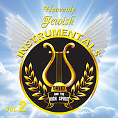 Heavenly Jewish Instrumentals, Vol. 2 by David & The High Spirit