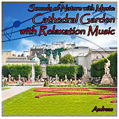 Sounds of Nature with Music: Cathedral Garden with Relaxation Music by Andreas