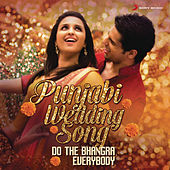 Punjabi Wedding Song by Various Artists