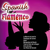 Spanish Flamenco by Various Artists