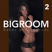Bigroom Babes and Bounces, Vol. 2 by Various Artists