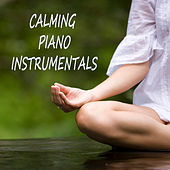 Calming Piano Instrumentals by The O'Neill Brothers Group