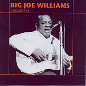 Chicago 63 by Big Joe Williams