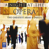 A Night At The Opera - The Greatest Arias & Duets by Various Artists
