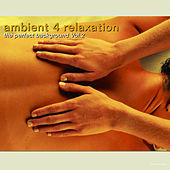 Ambient 4 Relaxation The Perfect Background, Vol. 2 by Various Artists
