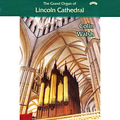 The Grand Organ of Lincoln Cathedral by Colin Walsh