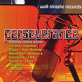 Perseverance by Various Artists