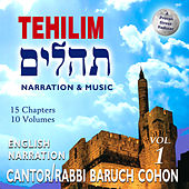 Tehilim (Psalms), Vol. 1 by David & The High Spirit