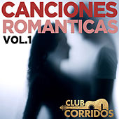 Estos Celos: Canciones Romanticas Vol. 1 - Presentado por Club Corridos by Various Artists