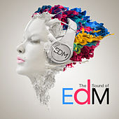 Sound of Edm by Various Artists