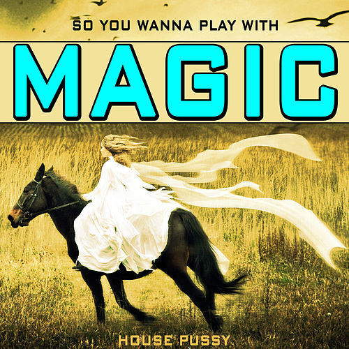 So You Wanna Play With Magic by House Pussy