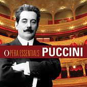 Opera Essentials: Puccini by Various Artists