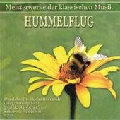 Meisterwerke der klassischen Musik: Hummelflug by Various Artists