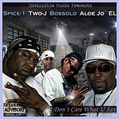 I Don´t Care What U Say - EP by Spice 1
