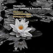 Telemann: Tenor Cantatas & Recorder Sonatas by Various Artists