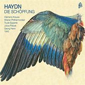 Haydn: Die Schöpfung by Various Artists