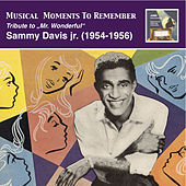 "Musical Moments To Remember: Tribute to ""Mr. Wonderful"" – Sammy Davis, Jr. by Sammy Davis, Jr."