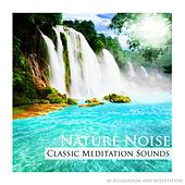 Nature Noise (Classic Meditation Sounds) by Relaxation & Meditation