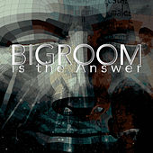 Bigroom Is the Answer by Various Artists