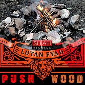 Push Wood - Single by Lutan Fyah