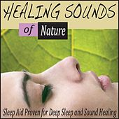 Healing Sounds of Nature: Sleep Aid Proven for Deep Sleep and Sound Healing by Robbins Island Music Group