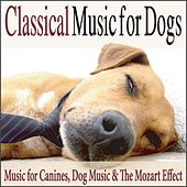 Classical Music for Dogs: Music for Canines, Dog Music & the Mozart Effect by Robbins Island Music Group