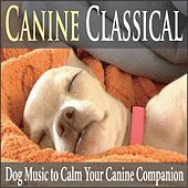 Canine Classical: Dog Music to Calm Your Canine Companion by Robbins Island Music Group