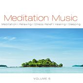 Meditation Music, Vol. 5 by Various Artists