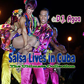 Salsa Lives In Cuba by Various Artists