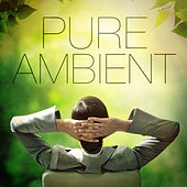 Pure Ambient Music (35 Atmospheric Chillout Beats to Relax) by Various Artists