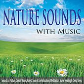 Nature Sounds With Music: Sounds of Nature, Ocean Waves, Forest Sounds for Relaxation, Meditation, Music Healing & Deep Sleep by Robbins Island Music Group