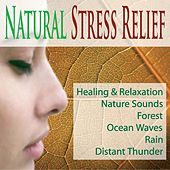 Natural Stress Relief: Healing & Relaxation Nature Sounds, Forest, Ocean Waves, Rain, Distant Thunder by Robbins Island Music Group