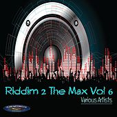 Riddim 2 the Max, Vol. 6 by Various Artists