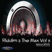 Riddim 2 the Max, Vol. 5 by Various Artists