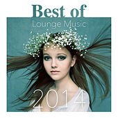 Best of Lounge Music 2014 by Various Artists