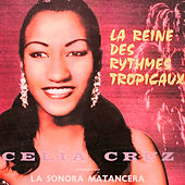 The Tropical Rhythm by La Sonora Matancera