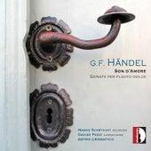 Georg Friedrich Handel: Son d'Amore, Sonate per flauto dolce by Davide Pozzi