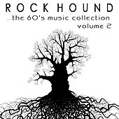 Rock Hound: The 60's Music Collection, Vol. 2 by Various Artists