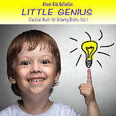 Little Genius: Classical Music for Growing Brains (Clever Kids Collection), Vol. 1 by Various Artists