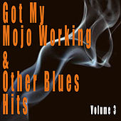 Got My Mojo Working & Other Blues Hits, Vol. 3 von Various Artists