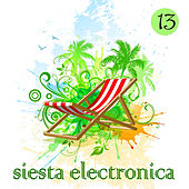 Siesta Electronica, Vol. 13 by Various Artists