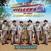 En Tus Manos by Los Rieleros Del Norte