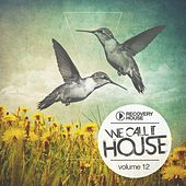 We Call It House, Vol. 12 by Various Artists