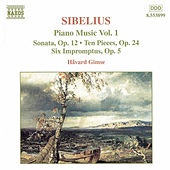 Piano Music Vol. 1 by Jean Sibelius