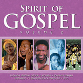 Spirit of Gospel, Vol. 2 by Various Artists