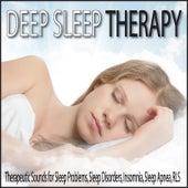 Deep Sleep Therapy: Therapeutic Sounds for Sleep Problems, Sleep Disorders, Insomnia, Sleep Apnea, R.L.S. by Robbins Island Music Group