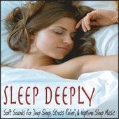 Sleep Deeply: Soft Sounds for Deep Sleep, Stress Relief, & Naptime Sleep Music by Robbins Island Music Group