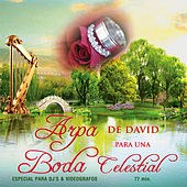 Arpa de David para una Boda Celestial by David & The High Spirit