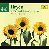 Haydn, J.: String Quartets Opp.76, 77 & 103 by Amadeus Quartet